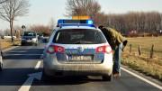 Symbolbild Polizeieinsatz