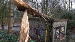 Nach Sturm Frederike beginnen die Aufräumarbeiten (Foto: RuhrkanalNEWS)