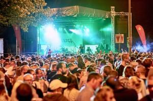 Altstadtfest Samstag HGZ 3977